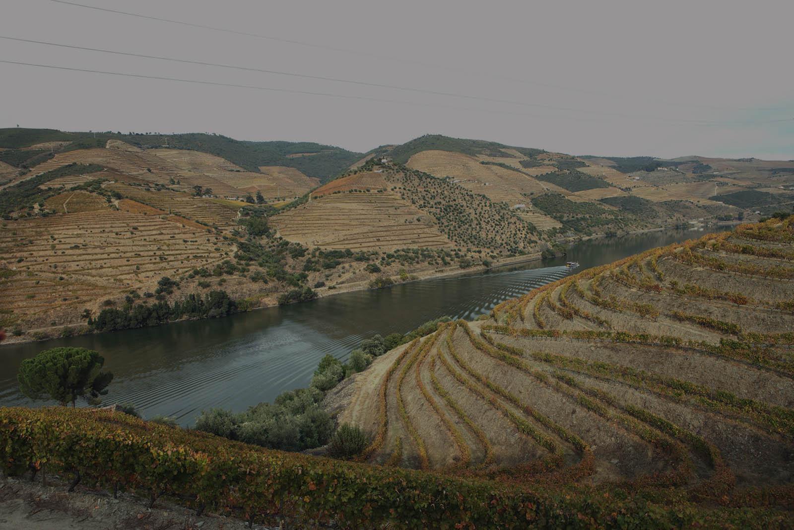 Quinta de Valle Longo